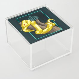 Golden snake Acrylic Box