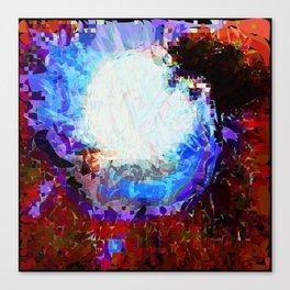 Eye of beauty Canvas Print