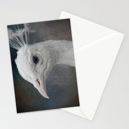 An Old Soul - White Peacock - Wildlife Stationery Cards