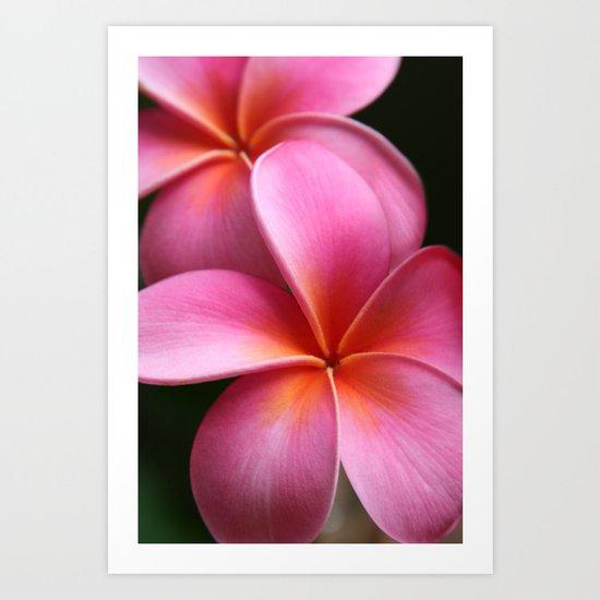 Pua Lei Aloha Cherished Blossom Pink Tropical Plumeria Hina Ma Lai Lena O Hawaii Art Print