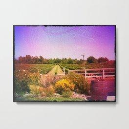 Santa Barbara Vineyard Farm Metal Print