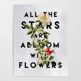 All the Stars Poster