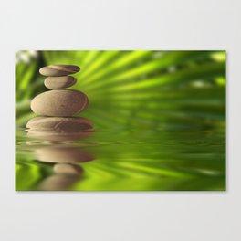 Exotic pebbles Canvas Print