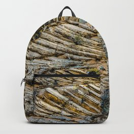 LAYERS OF TIME IN ANCIENT SANDSTONE Backpack