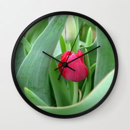 Hidden Gem Wall Clock