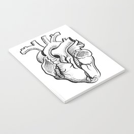 Charcoal :: Anatomical Heart Sketch Notebook