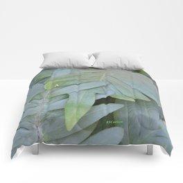 TEXTURES -- Ferns Enfolded Comforters