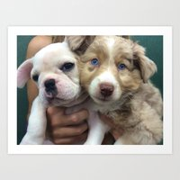 puppies Art Prints featuring Puppies by Camila Mariel