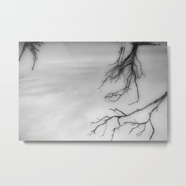 Weathering the Storm 5 Metal Print