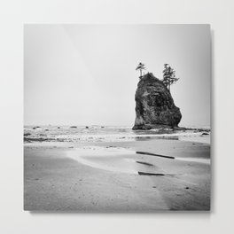 Olympic Coast Metal Print