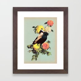 CORVIDAE Framed Art Print