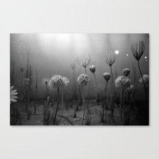 Take Me Deeper, Darker Canvas Print