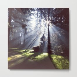 Sun Beams Metal Print