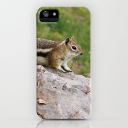 Just Chillin' iPhone Case