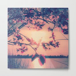 To Love and Be Loved (Spring Pink Cherry Blossoms at Dusk) Metal Print