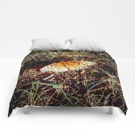 Just A Plain Ole' Butterfly Comforters
