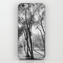 Into The Shadows iPhone Skin