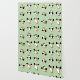 Olympic Lifting Corgi Wallpaper