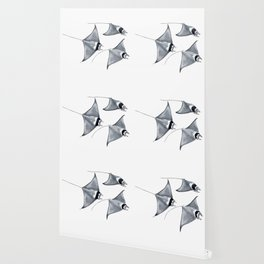 Devil fish Manta ray Mobula mobular Wallpaper