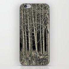 Cottonwoods iPhone & iPod Skin