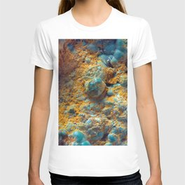 Bubbly Turquoise with Rusty Dust T-shirt