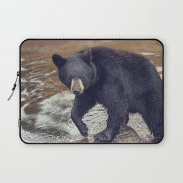 Young black bear in a pond Laptop Sleeve