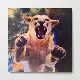 When a Cougar Attacks  Metal Print