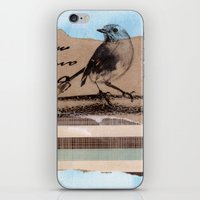 birdy iPhone & iPod Skins featuring Birdy by zAcheR-fineT