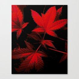 DaPlant - Red --- #GREENRUSH Canvas Print