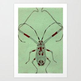Bug Etching 1 Art Print