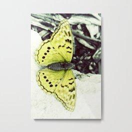Amarillo Metal Print