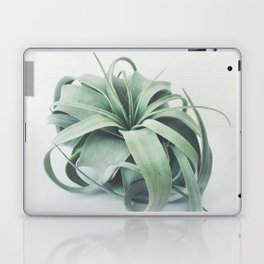 Air Plant III Laptop & iPad Skin