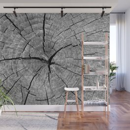 Weathered Old Wood Texture Wall Mural