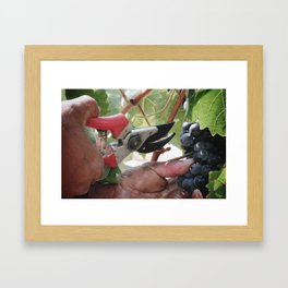 Vendimia Framed Art Print