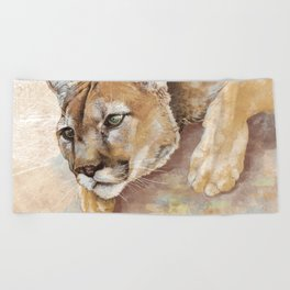 Captivated Mountain Lion Beach Towel