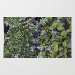 Succulent Smitten Rug