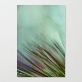 A Cool Breeze Canvas Print