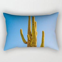 Minimalist Green Cactus Blue Sky Mexican Desert Landscape Rectangular Pillow