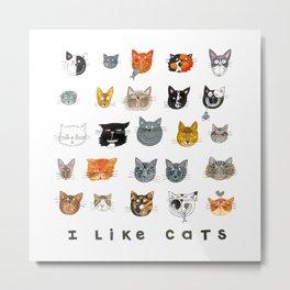 I Like Cats Metal Print