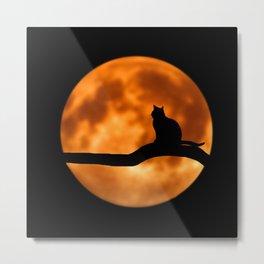 Art Cat Moon Metal Print