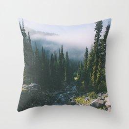Washington III Throw Pillow