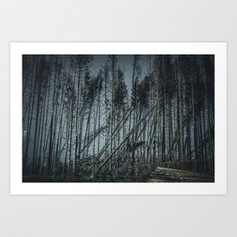 Fallen Trees After Storm Victoria February 2020 Möhne Forest dark Art Print