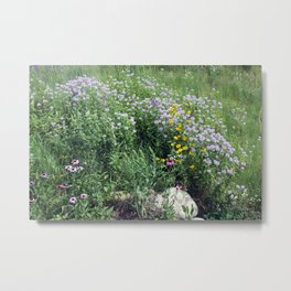 Native Prairie Metal Print