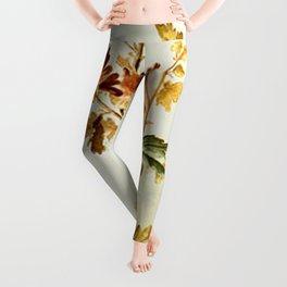 Chrysantheme Leggings