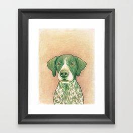 Pointer dog - Jola 02 Framed Art Print