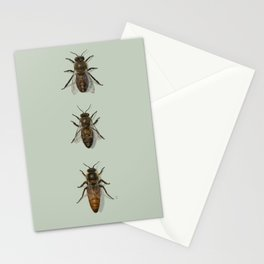 Honey Bee Family Stationery Cards
