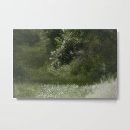Nature Trail II Metal Print