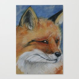 Handsome Red Fox Painting Canvas Print