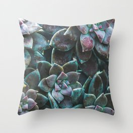 Botanical Gardens II - Succulents #321 Throw Pillow