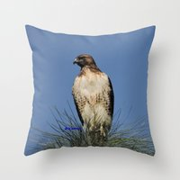 snatch Throw Pillows featuring Red-Tailed Hawk on Watch at Foothill and B Street by Ralph S. Carlson